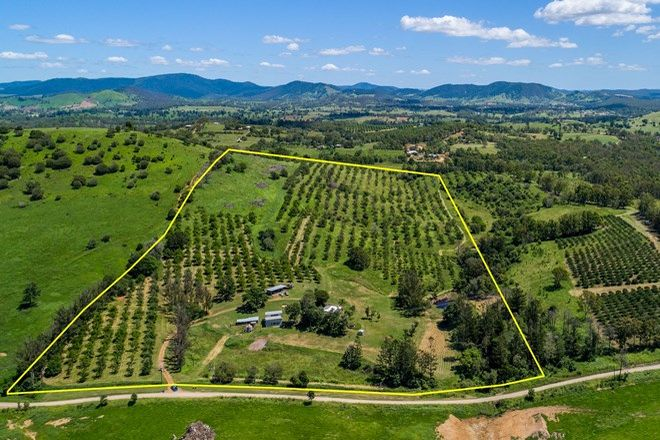 Picture of 160 Birt Road, LONG FLAT QLD 4570
