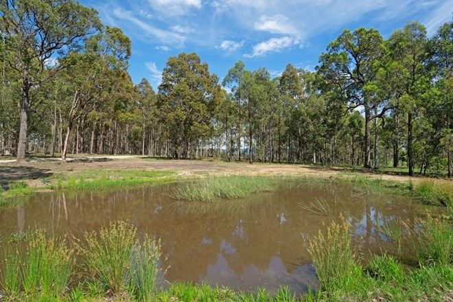 Picture of Lot 1/616 East Seaham Road, EAST SEAHAM NSW 2324