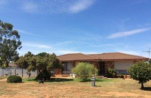 Picture of 135 MOSS AVEUNE, Narromine NSW 2821