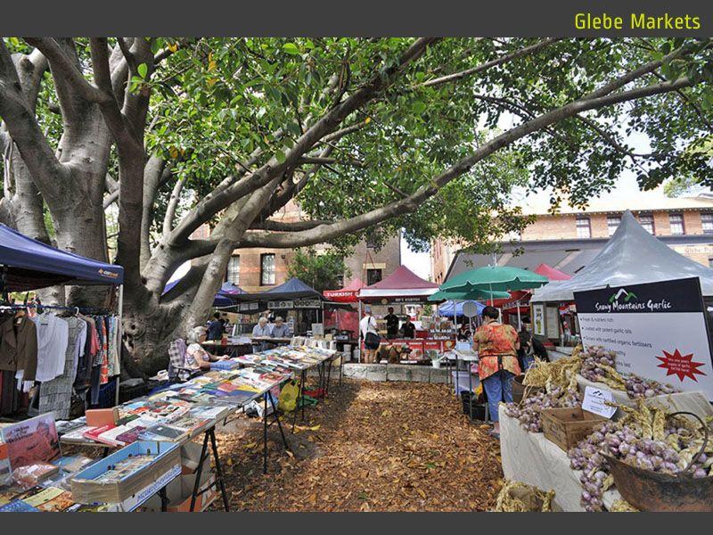307 Glebe Point Road, Glebe NSW 2037, Image 1