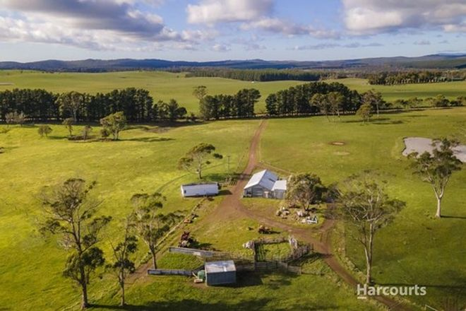 Picture of 339 Back Creek Road, PIPERS RIVER TAS 7252