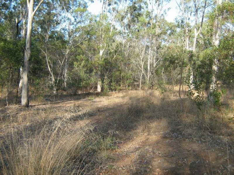 Lot 126 Brocklehurst Road, Wattle Camp QLD 4615, Image 0