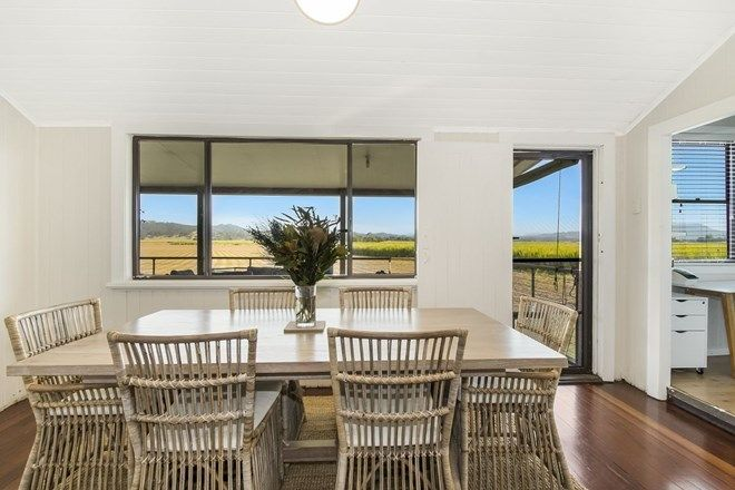 Picture of 8336 Tweed Valley Way, CONDONG NSW 2484