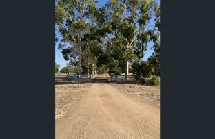 Picture of 6176 Wakool Road, Wakool NSW 2710