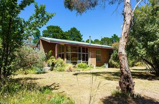 Picture of 54 Bagshaw Street, Harcourt VIC 3453