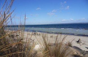 Picture of 3 Hog Bay Road, Baudin Beach SA 5222