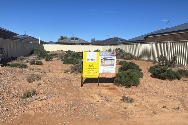 Picture of 13 Julie Francou Place, WHYALLA NORRIE SA 5608