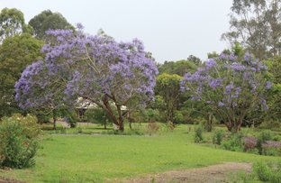 Picture of Lot 2 Teutoberg Avenue, Witta QLD 4552
