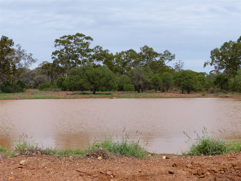"""""""Idaylia"""" 5129 Warrego Highway, Mungallala QLD 4467, Image 2"""