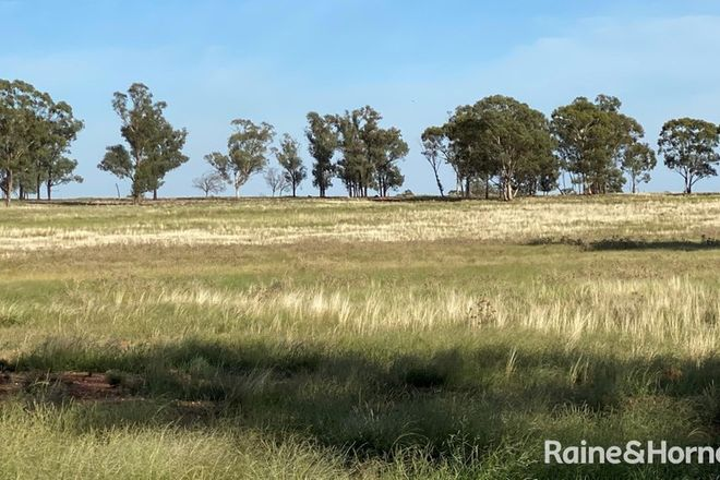 Picture of 468 EMU VALLEY LANE, TULLAMORE NSW 2874