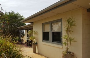 Picture of 169 Ballantyne Road, Waikerie SA 5330