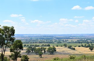 Picture of 3404 Murringo Road, Young NSW 2594