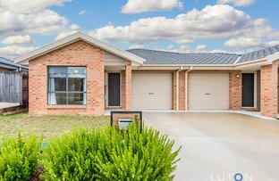 Picture of 33 Daramoolen Street, Ngunnawal ACT 2913