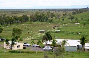 Picture of 711 EMU PARK ROAD, Nankin QLD 4701