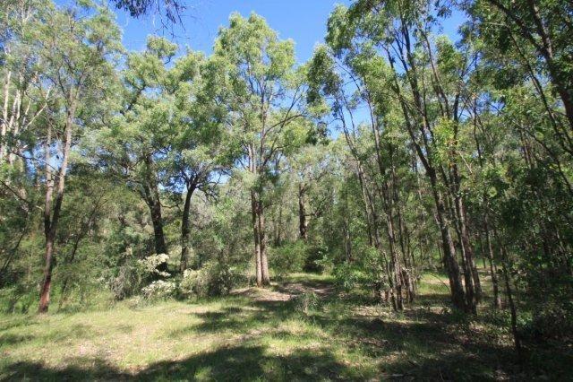 41-45 Ninth Road, BERKSHIRE PARK NSW 2765, Image 1