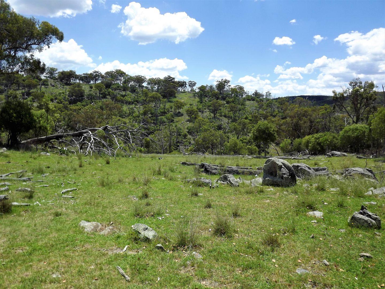 181 Tent Hill Road, Emmaville NSW 2371, Image 0