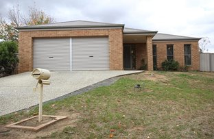 Picture of 12 Belah Court, Thurgoona NSW 2640