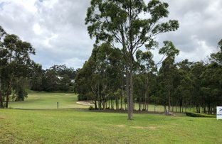 Picture of 24 The Saddle, Tallwoods Village NSW 2430