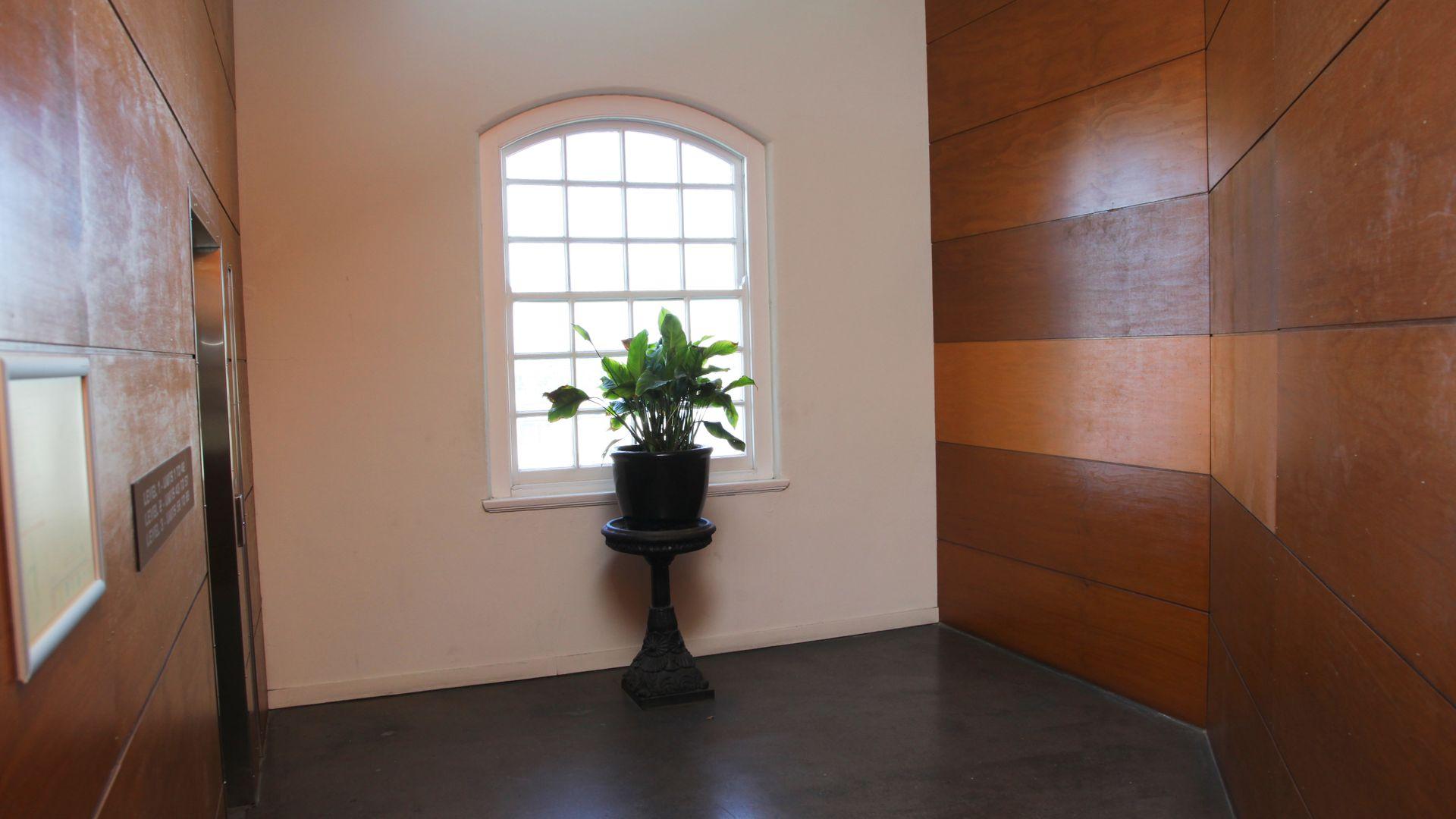 36 Vernon Terrace, Teneriffe QLD 4005, Image 10