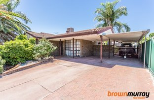 Picture of 3 Lyminge Street, Gosnells WA 6110