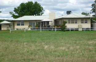 1848 GAMBLE CREEK ROAD, Binnaway NSW 2395