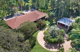 Picture of 6 Brolga Court, Little Mountain QLD 4551