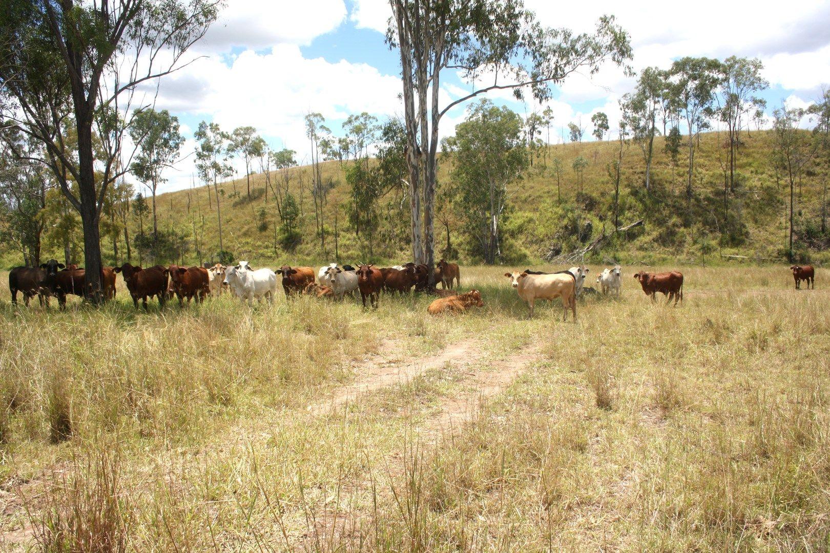 3940 Beeron Road, Mundubbera QLD 4626, Image 0