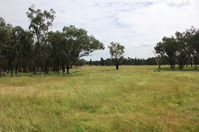 Picture of 'Valhalla' 729 Wallangra Rd, ASHFORD NSW 2361