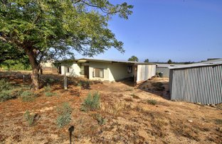 Picture of 59 GURNEY ROAD, Loxton SA 5333