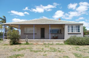 Picture of 13 Murrayville Road, Pinnaroo SA 5304