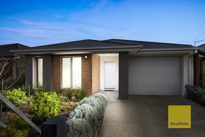 Picture of 14 Romley Ave, ARMSTRONG CREEK VIC 3217