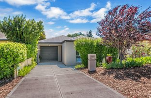 Picture of 11A Chilworth Ave, Enfield SA 5085