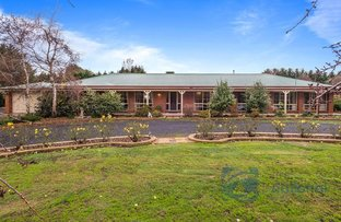 Picture of 46 Gehreys Lane, Kilmore VIC 3764