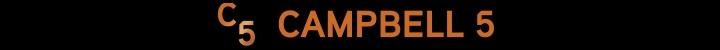 Branding for Campbell 5