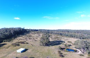 Picture of 291 Tamboon Road, Cann River VIC 3890
