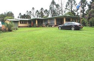 Picture of 5 Kidd Close, Malanda QLD 4885