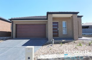 Picture of 4 Graddaka Terrace, South Morang VIC 3752