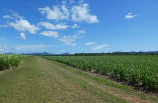 Picture of 64000 Bruce Highway, Innisfail QLD 4860