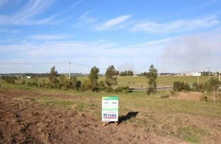 Picture of Lot 406 Warden Close, Bolwarra Heights NSW 2320