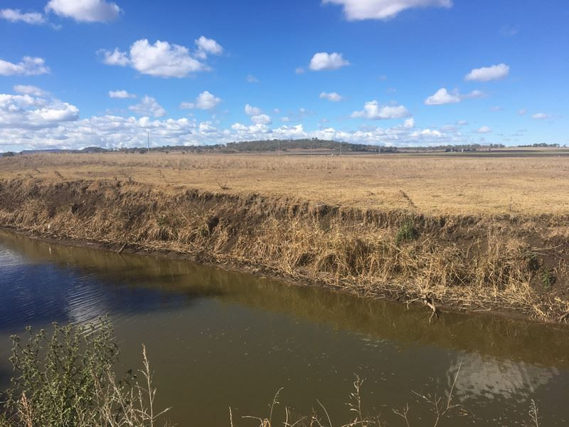 Lot 7 New England Highway, Nobby QLD 4360, Image 2