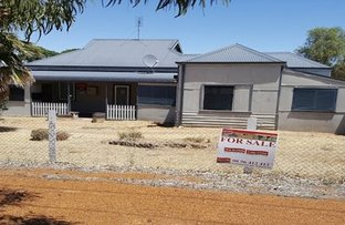 Picture of 62-64 GOYDER STREET, Corrigin WA 6375