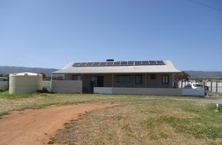 Picture of 356 Nelshaby Road, Napperby SA 5540