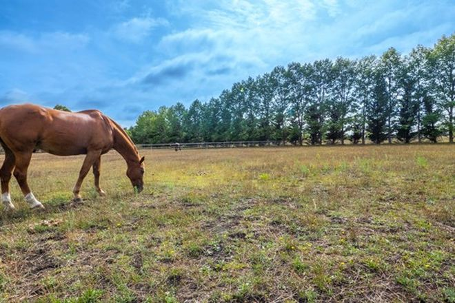 Picture of Lot 105 The Pines Estate, ARMIDALE NSW 2350