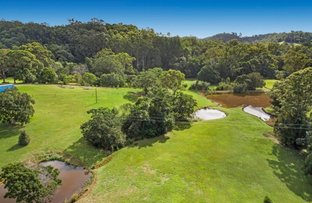 Picture of 38 Evans Road, Black Mountain QLD 4563