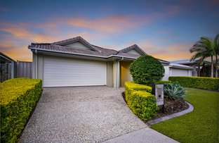 Picture of 16 Ribbonwood Street, Sippy Downs QLD 4556