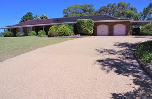 Picture of 31 Babs Court, Tocumwal NSW 2714