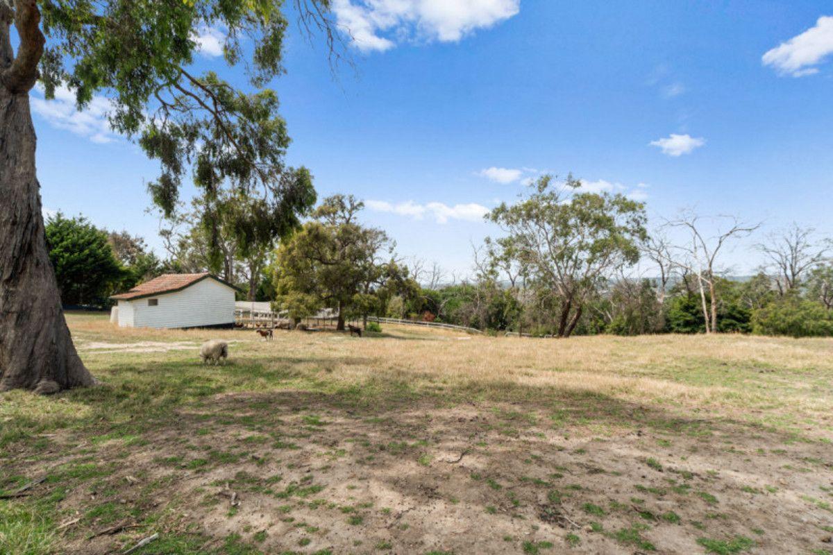84A Allison Road, Mount Eliza VIC 3930, Image 2
