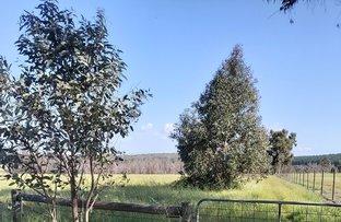Picture of 210 Coalfields Road, Allanson WA 6225