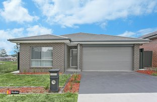 Picture of 16 Bellflower Avenue, Schofields NSW 2762