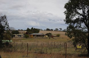 Picture of 1086 Bruxner Way, Tenterfield NSW 2372